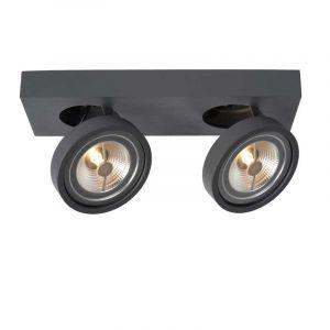 Lucide Spotlamp Nenad 2-lichts Grijs 09920/20/36